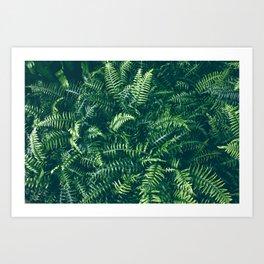 Leaves I Art Print