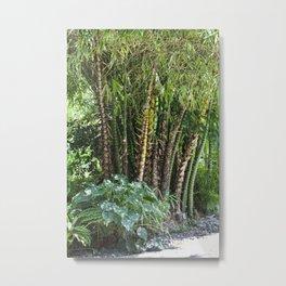 Palm Grove Metal Print