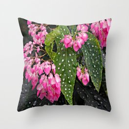 DROOPING PINK BEGONIA FLOWER SPRAYS ON BLACK Throw Pillow