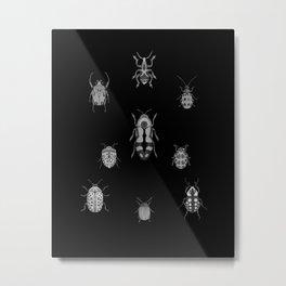 Beautiful Bugs Black Metal Print