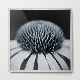 Echinacea Flower Macro Metal Print
