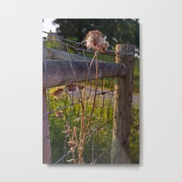 Birthday Flower Metal Print