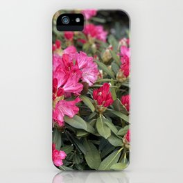 Marbella Flower Hour iPhone Case