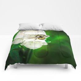 The Bumble Bee Comforters