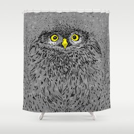 Fluffy baby owl staring eyes Shower Curtain