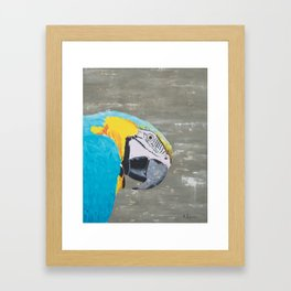 Oscar the Macaw Parrot Framed Art Print