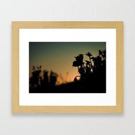Spring of the Wasteland Framed Art Print