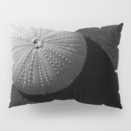 Seashell Pillow Sham