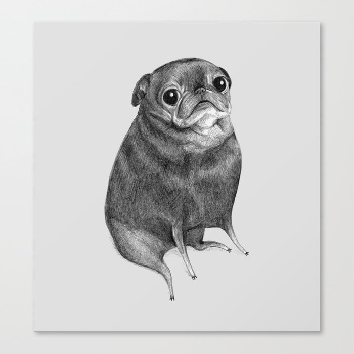 Sweet Black Pug Canvas Print