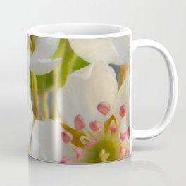 Comice B1 Coffee Mug