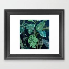 Beautiful Banana Leaves at night Framed Art Print