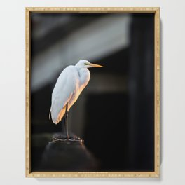 Great Egret at Sunset Serving Tray