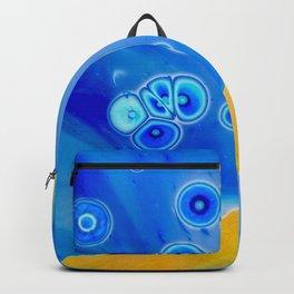 Eureka I Backpack