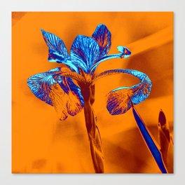 Glowing Iris... Canvas Print