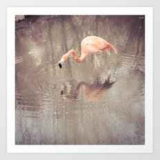 the flamingo (take a look in the mirror) Art Print