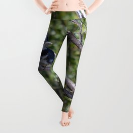 Two 4 One - Belted Kingfisher Leggings