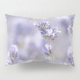 Sweet Lavender Pillow Sham