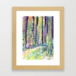 Redwoods Road Trip Framed Art Print