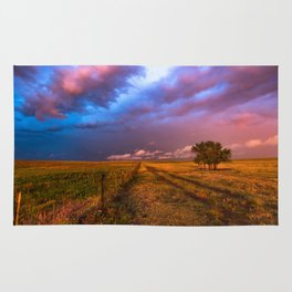 Far and Away - Lone Tree Under Colorful Sky in Oklahoma Panhandle Rug