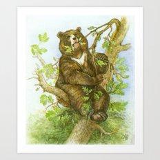 Bear on a Tree Art Print