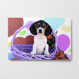 Beagle Puppy Standing in a Purple Basket Surrounded by Red Roses in front of Rainbow Hearts Metal Print