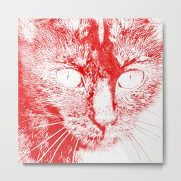 Fluffy's eyes drawing, red Metal Print