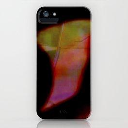 Camborio 5 iPhone Case