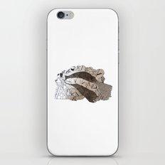 Infinite Badger iPhone & iPod Skin