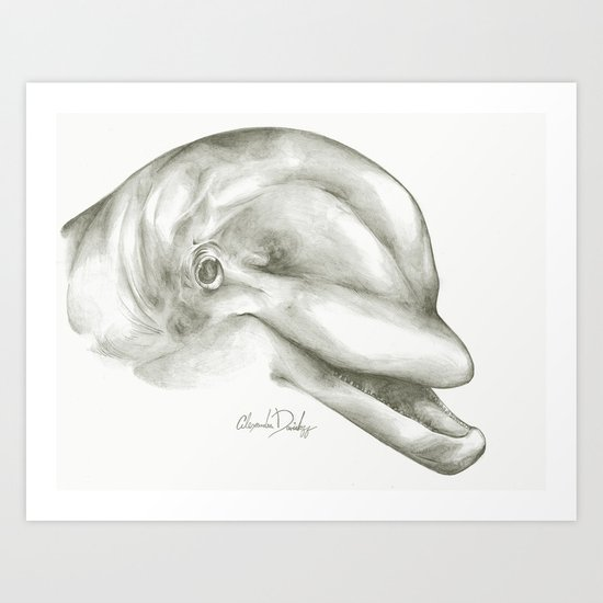 Daphne the Dolphin  Art Print