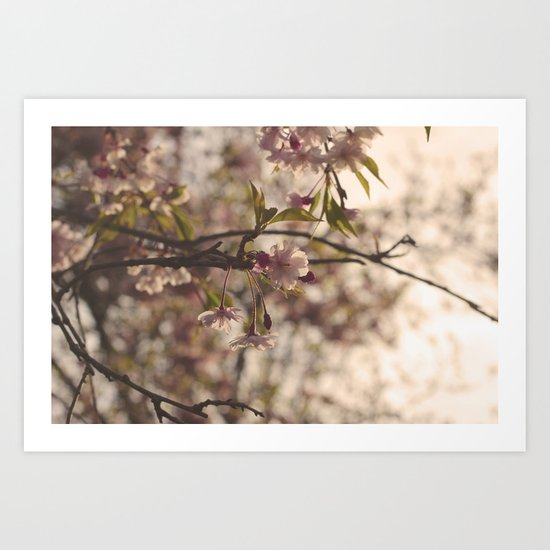 Some Enchanted Evening Art Print