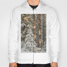 lonely pine Hoody