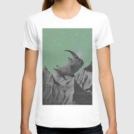 Rhino Mountain mint T-shirt