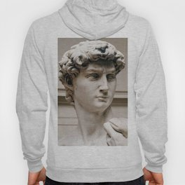 """Michelangelo """"David"""" (head)(1) Hoody"""