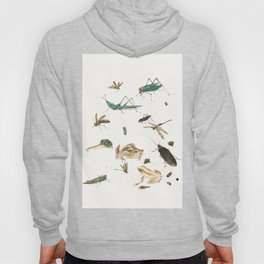 Insects, frogs and a snail Hoody