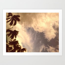 palm isles sky Art Print