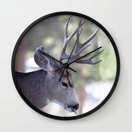 Watercolor Deer, Mule 06, RMNP, Nasty Bites Wall Clock