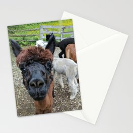 Inquisitor Stationery Cards