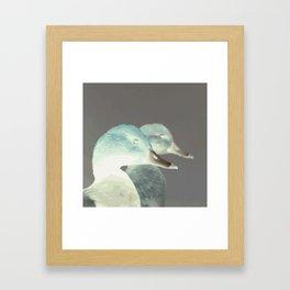 ANATRA #2 Framed Art Print