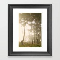 Fairy Forest, San Francisco Framed Art Print