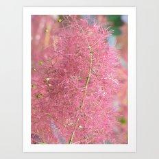 Pink Fuzzy Flower Art Print