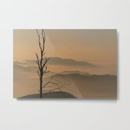 Landscape with Mountains - Tree and Fog Metal Print
