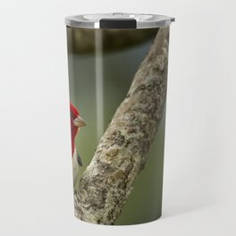 Red Crested Cardinal Travel Mug