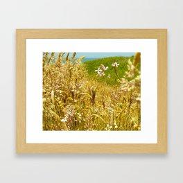 Fort Brag Seaglass Beach IV Framed Art Print