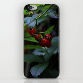 buggy on a berry iPhone Skin