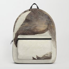 Funny Horse Into The Wind Ivory Backpack