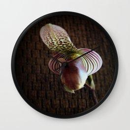 Mutant Ninja Slipper Orchid Wall Clock
