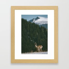 Hello spring! - Landscape and Nature Photography Framed Art Print