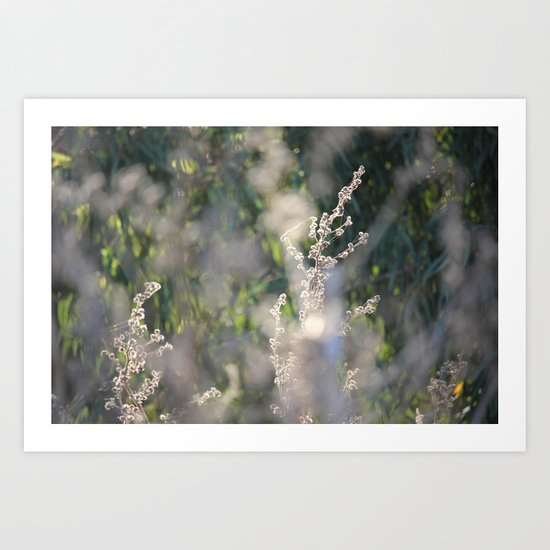 On The Sunny Side of Life Art Print