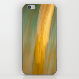 Ancient Gold and Turquoise Texture iPhone Skin