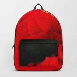 Red Rose Flower Close up Backpack